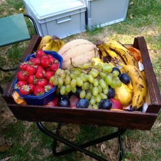 CETIN Früchte